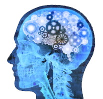 guide to nootropics