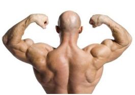 epistane legal steroid