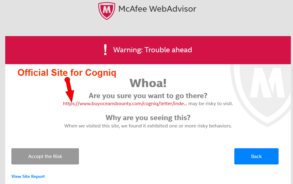 how to turn off mcafee webadvisor