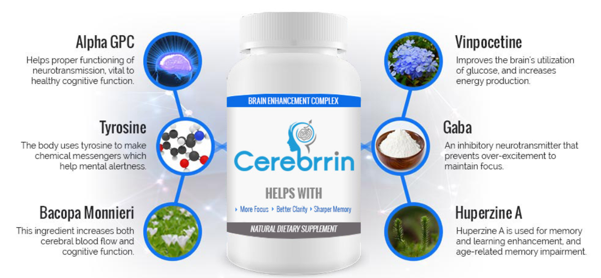 cerebrrin ingredients
