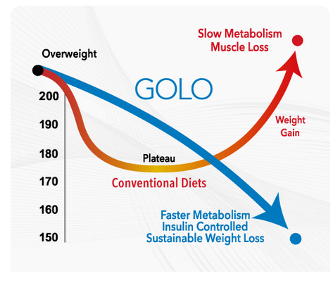 golo weight loss graph