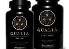 Qualia Review – THE Strongest Nootropic Stack?