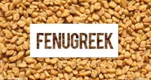 Fenugreek has many benefits