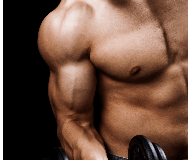 Best Supplements for Muscle Growth