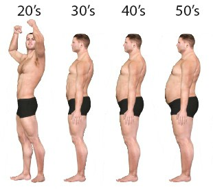 low testosterone and body composition