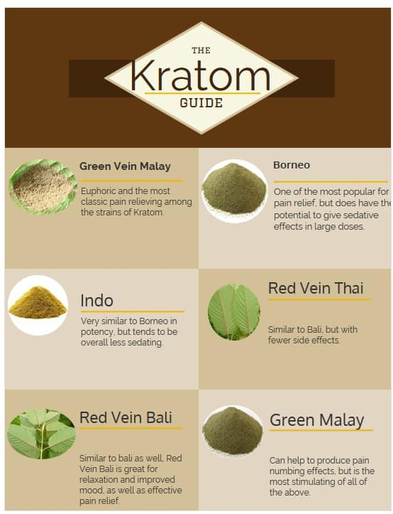 the various types of kratom
