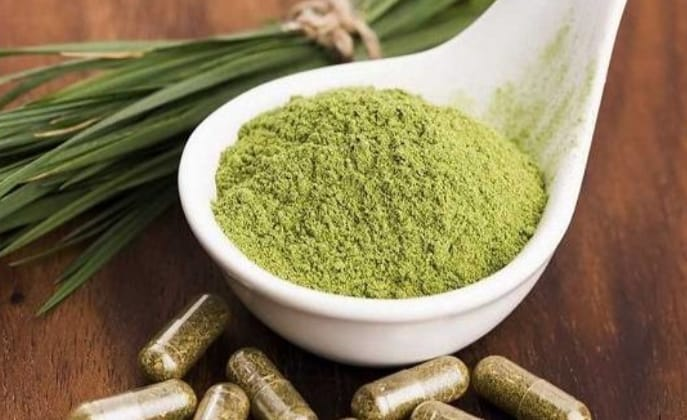 kratom powder versus capsules - which is better
