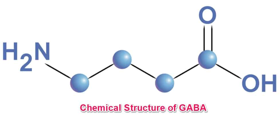 chemical structure of gaba