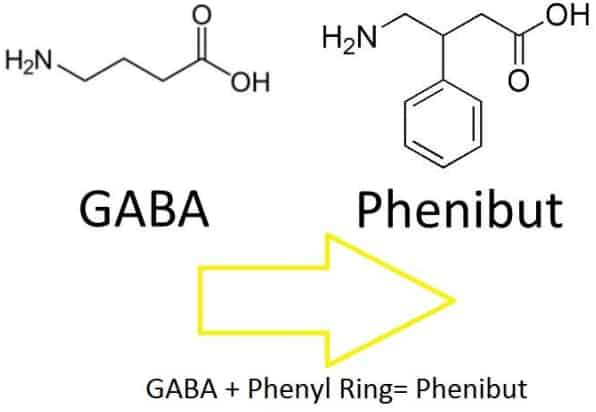 how phenibut adds a ring around gaba
