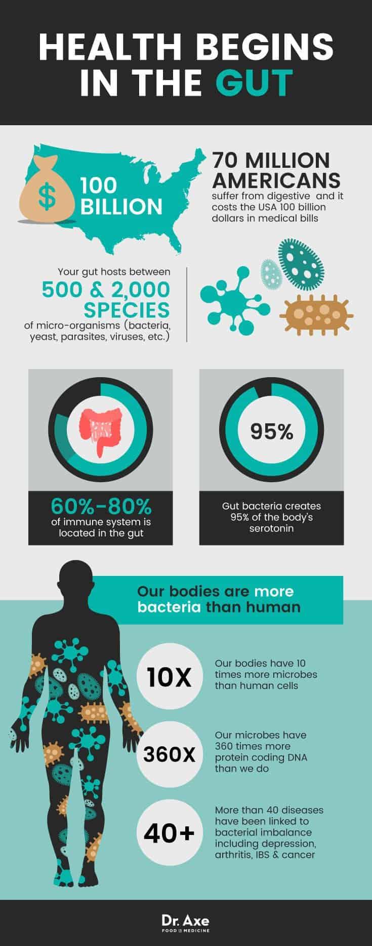 dr axe probiotics infographic