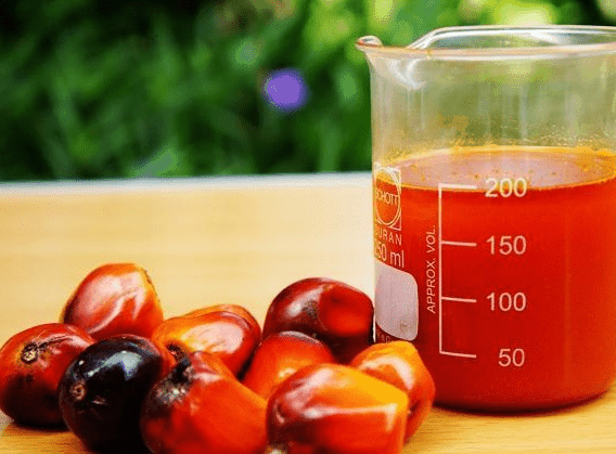 red palm oil increased testosterone