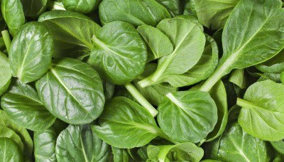 spinach lowers testosterone
