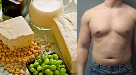 soy and testosterone myth