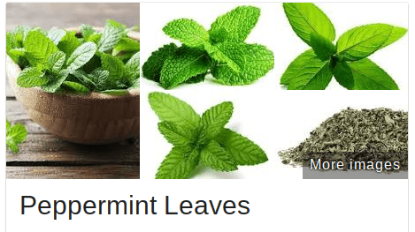 Peppermint is a natural aphrodisiac found in some female versions of viagra pills