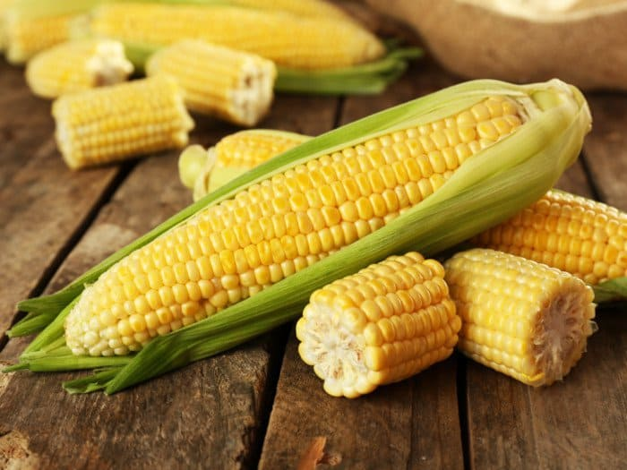 Dr. Pedre, the maker of Synbiotic 365 claims that corn is bad for gut health