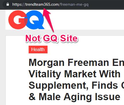 fake gq site