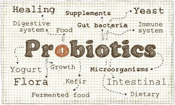 Probiotics, prebiotics, and synbiotics are good for gut health and constipations