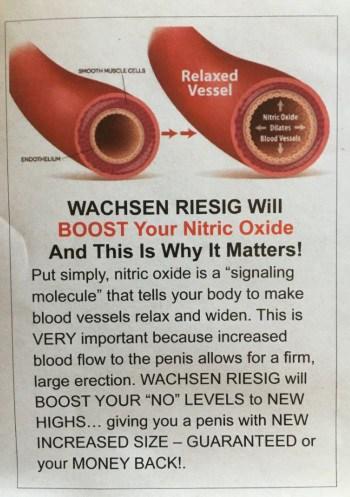 how wachsen riesig works